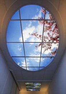 sky factory luz techos fotos diseño
