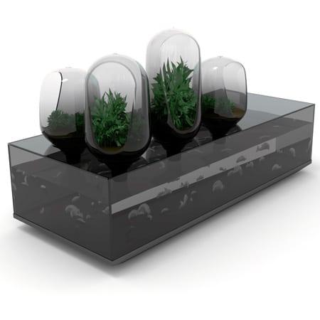 acuario pecera diseño decoracion