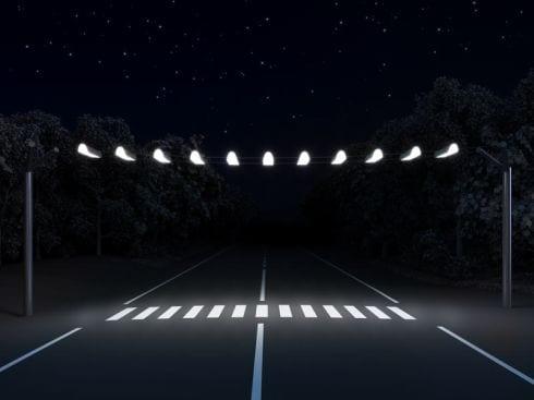 paso cebra peatones iluminacion art lebedev