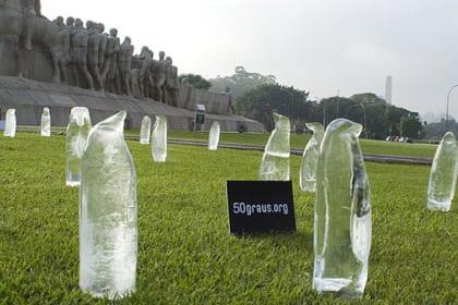 pingüinos hielo