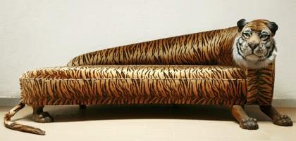 sofa pop tigre
