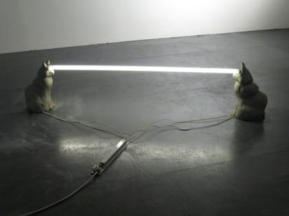 gatos laser art