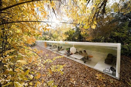 oficinas bosque arquitectura selgas cano