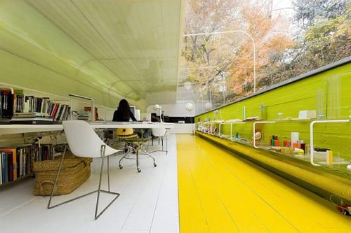 oficinas bosque naturaleza