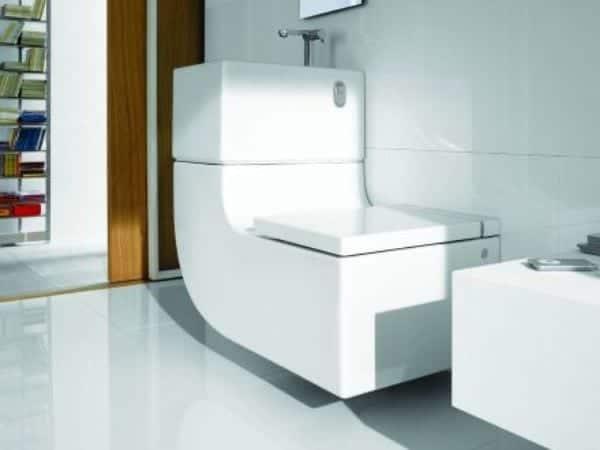 toilet roca
