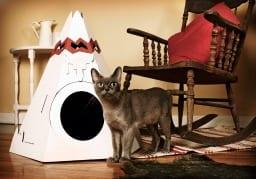 caseta gatos decoracion