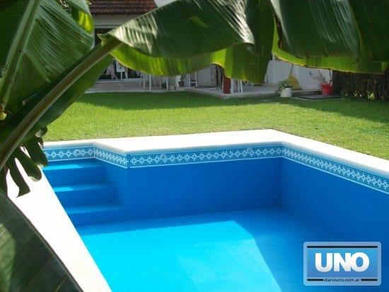 Consejos para tu piscina - Limpiador fondo piscina ...