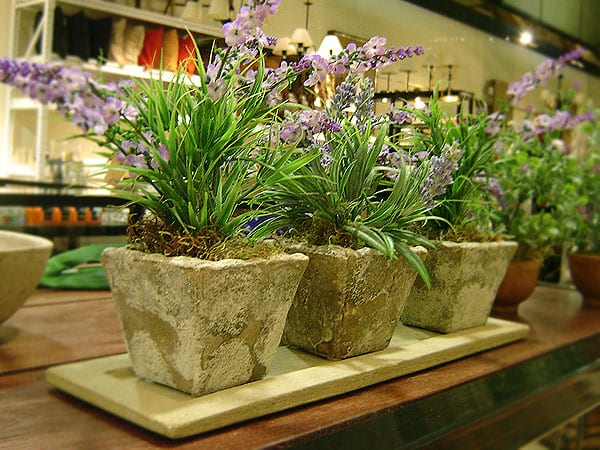 Plantas artificiales para decorar tu hogar for Decoracion con plantas en living
