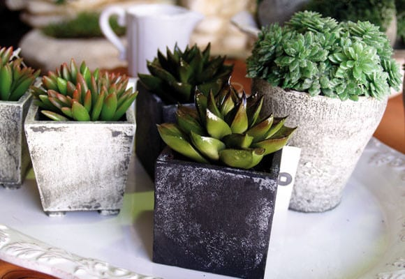 Plantas artificiales para decorar tu hogar for Casas decoradas con plantas naturales