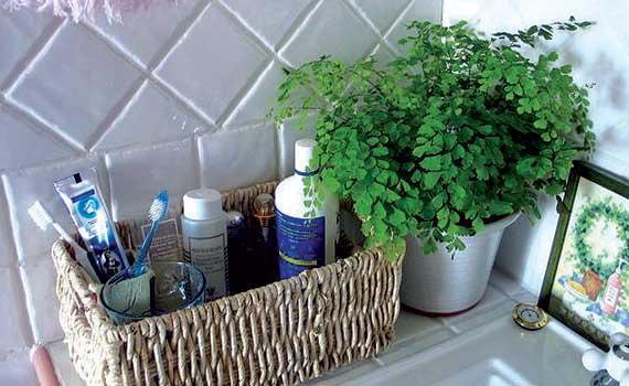 Decora el cuarto de baño con una planta