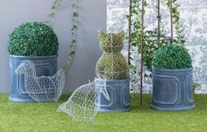jardin ornamental