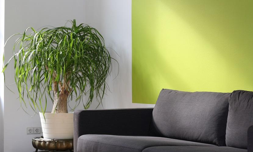 Combinar verde con gris