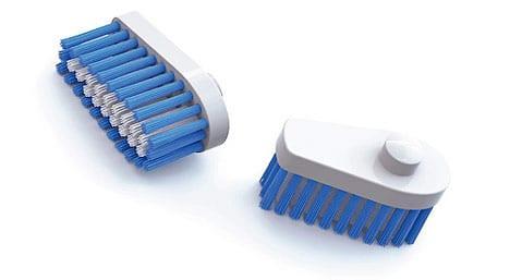 cerdas cepillo dientes