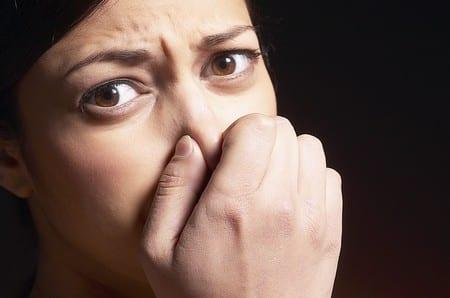 Cómo eliminar los malos olores de la casa