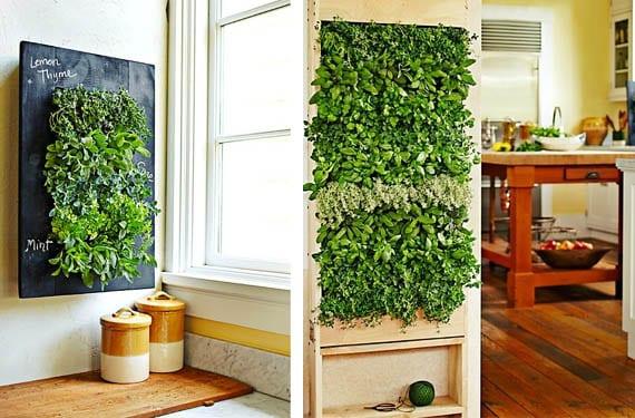 Jardin vertical de hierbas aromáticas cocina