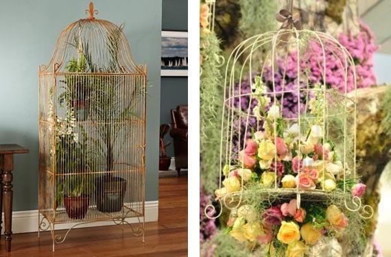 Jaulas vintage con plantas