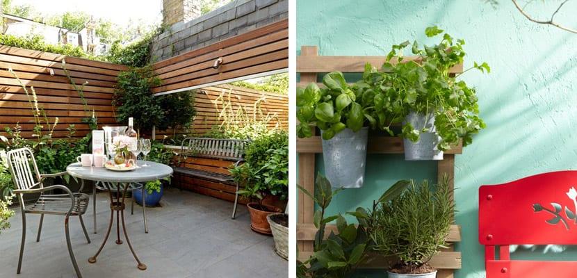 Terraza urbana con plantas