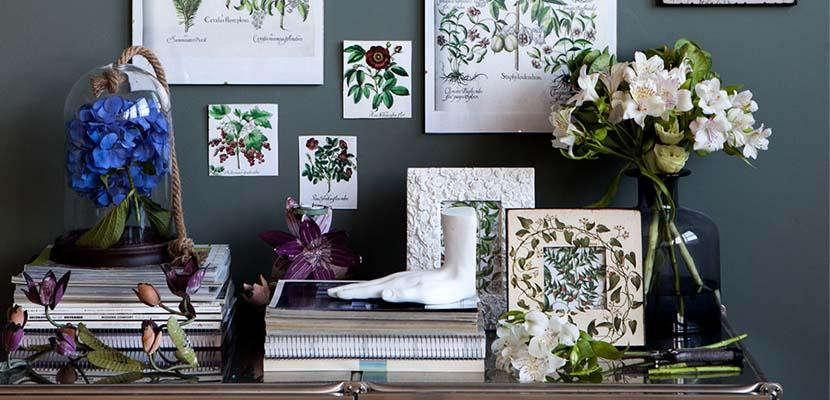Colección Herbarium