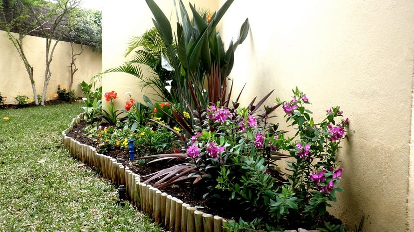 Consejos sencillos para jardines peque os - Como decorar un jardin pequeno ...