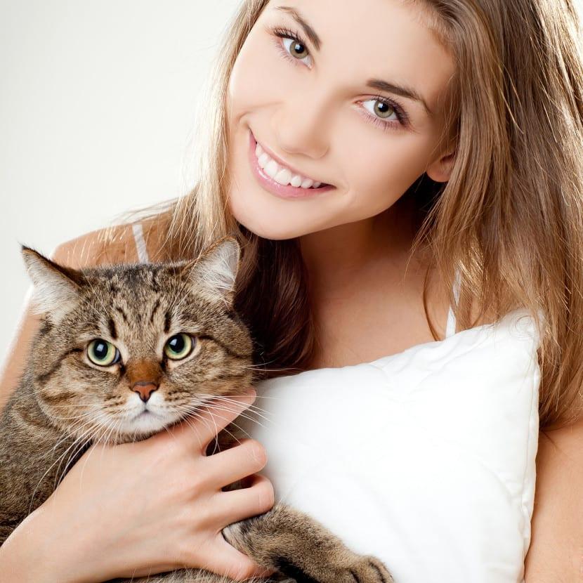 Plantas de interior decorativas que son seguras para mascotas Plantas seguras para gatos