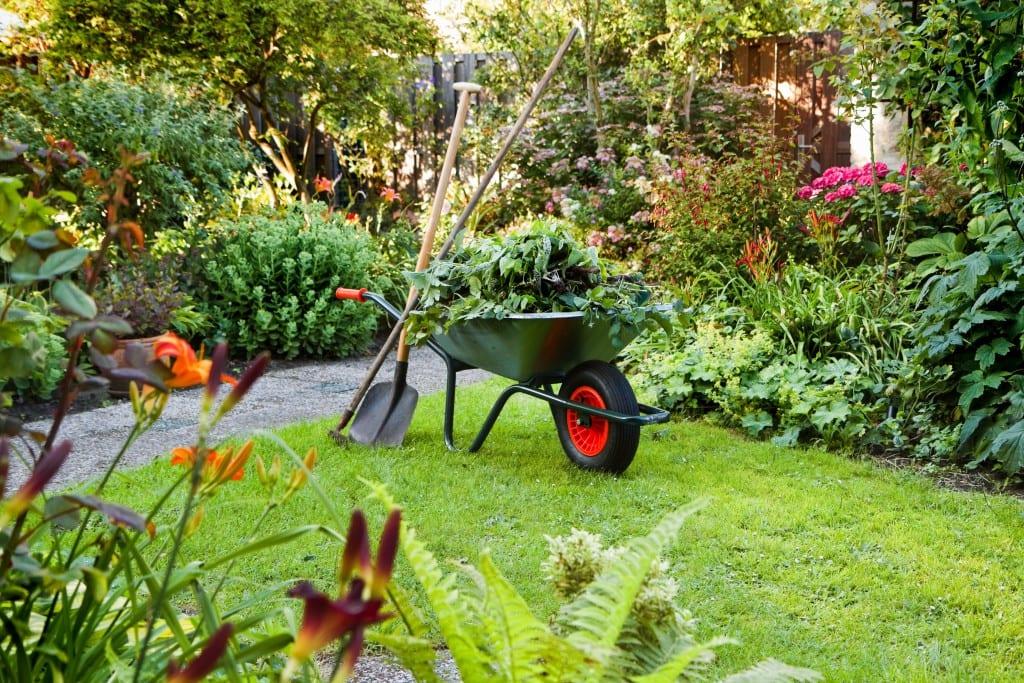 jardineria con carro