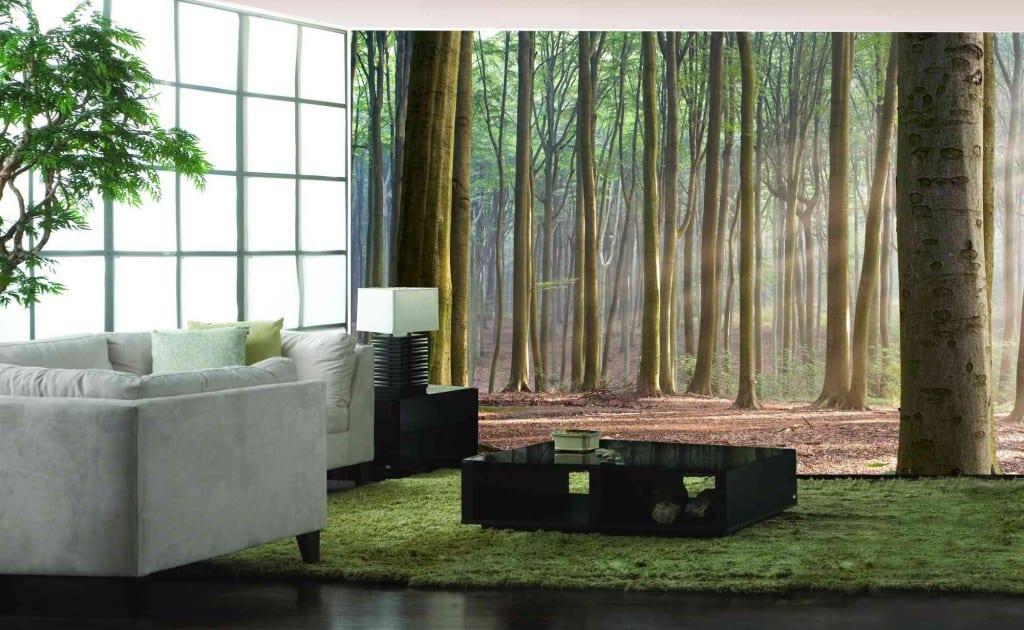 fotomural bosque