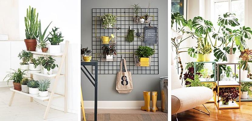 9 propuestas originales para organizar tus plantas for Macetas para interiores hogar
