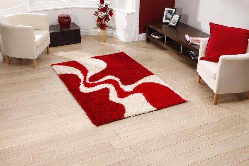 salon alfombra peque