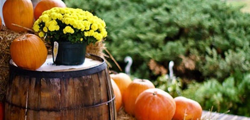 Fiesta de otoño
