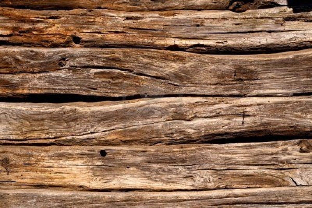 c mo eliminar la carcoma de los muebles de madera