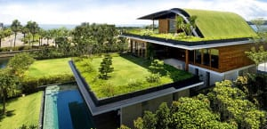 Cómo tener una casa más ecológica