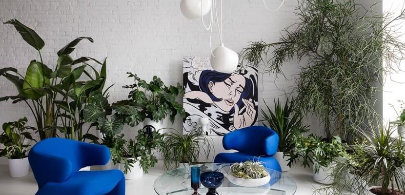 Loft de diseño con plantas