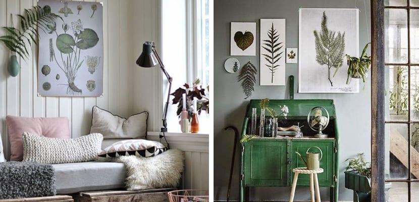 Inspiración botánica hogar