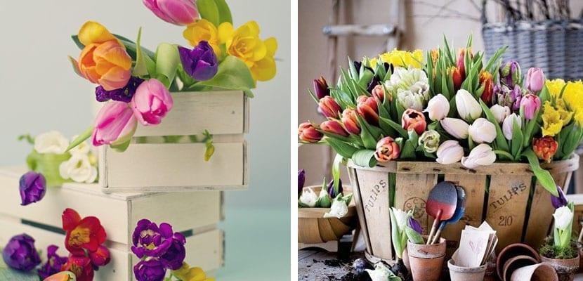 Decorar con tulipanes en cajas de madera