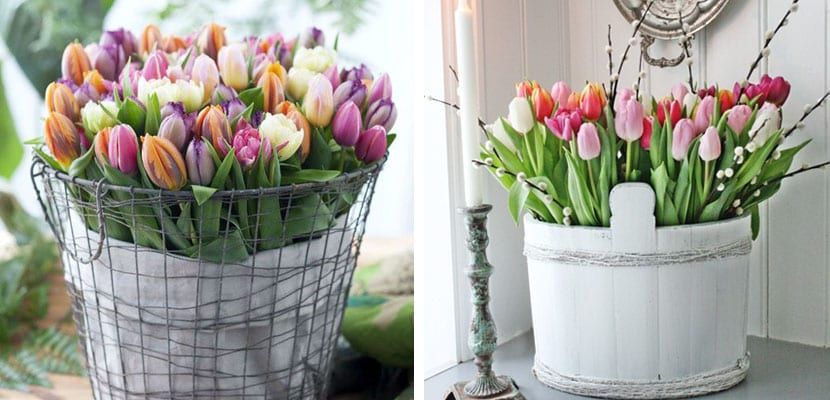 Decorar con tulipanes en cestas