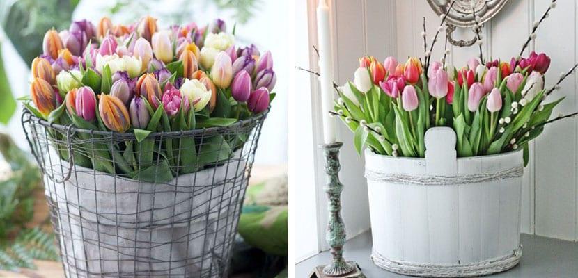 Decorar con tulipanes en cestas