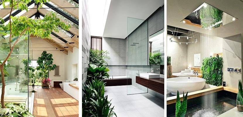 Decora con plantas verdes tu cuarto de ba o - Cuartos de bano grandes ...