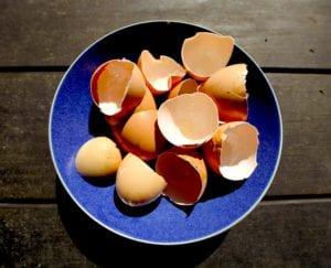 cáscaras de huevo en el hogar