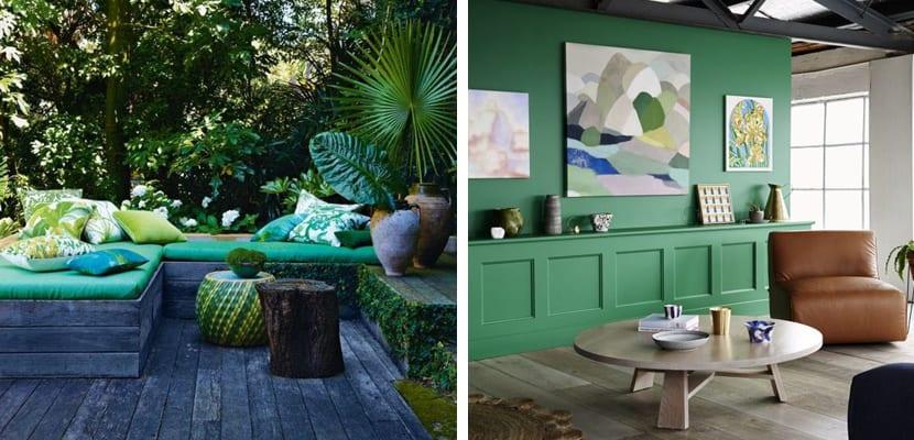 Verde estilo tropical