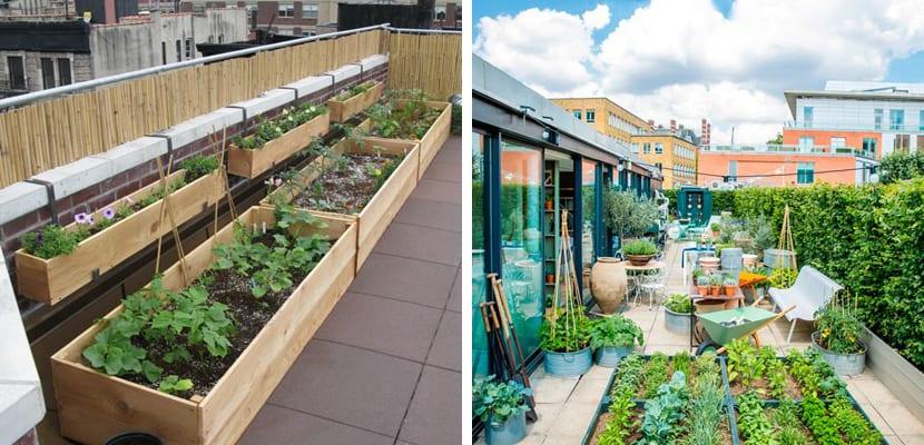 Aprovechar la azotea para disfrutar de un jard n o terraza for Jardines urbanos en terrazas