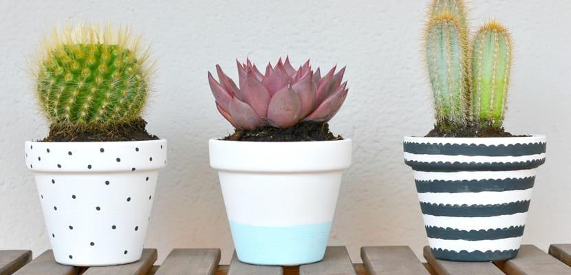 Diy para decorar macetas con mucho estilo - Macetas minimalistas ...