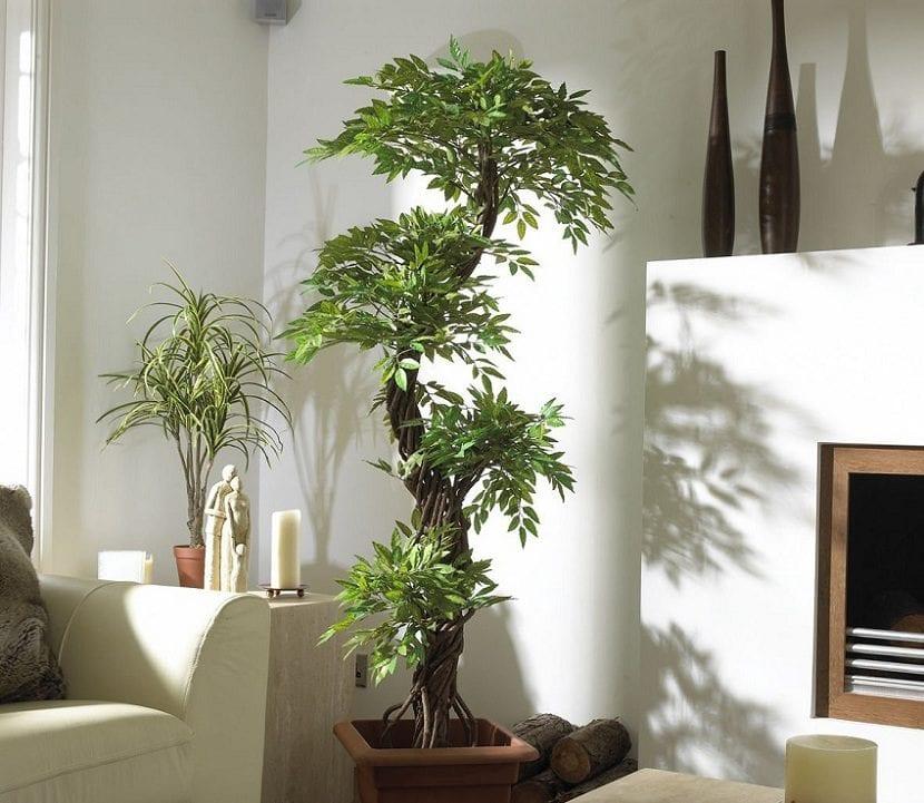 ventajas de decorar la casa con plantas artificiales