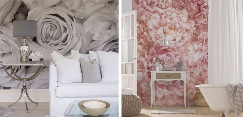 Foto mural de rosas