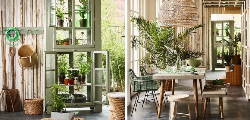 Casa con plantas naturales