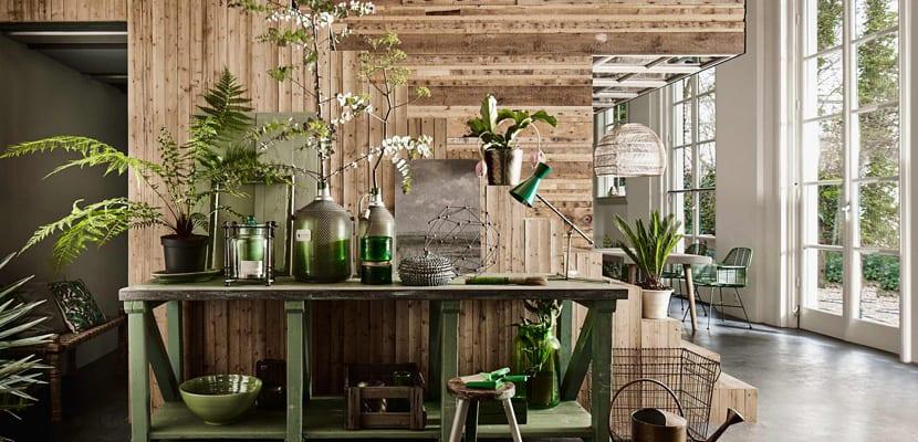 Color verde y plantas