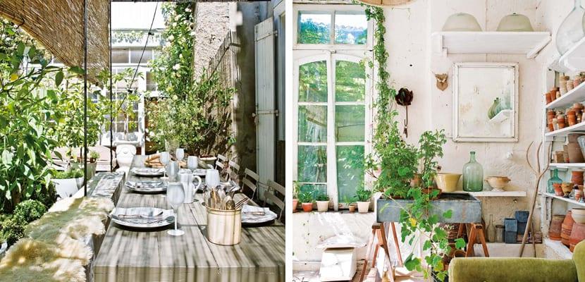 Espacios naturales en el hogar