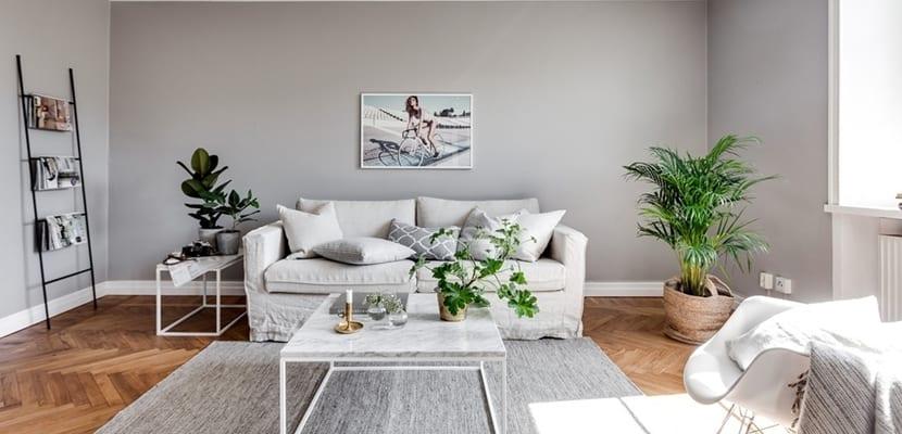 Decorar el hogar en tonos suaves y grises Salones en tonos grises