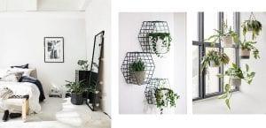 Decorar con plantas el dormitorio