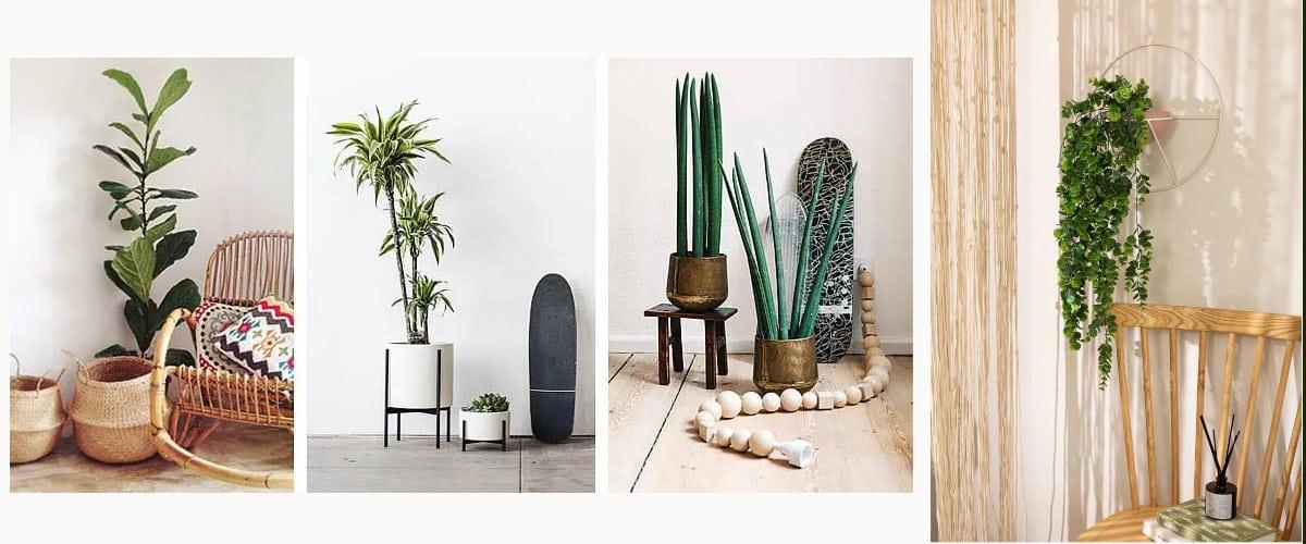 Maceteros de tendencia para decorar tu hogar