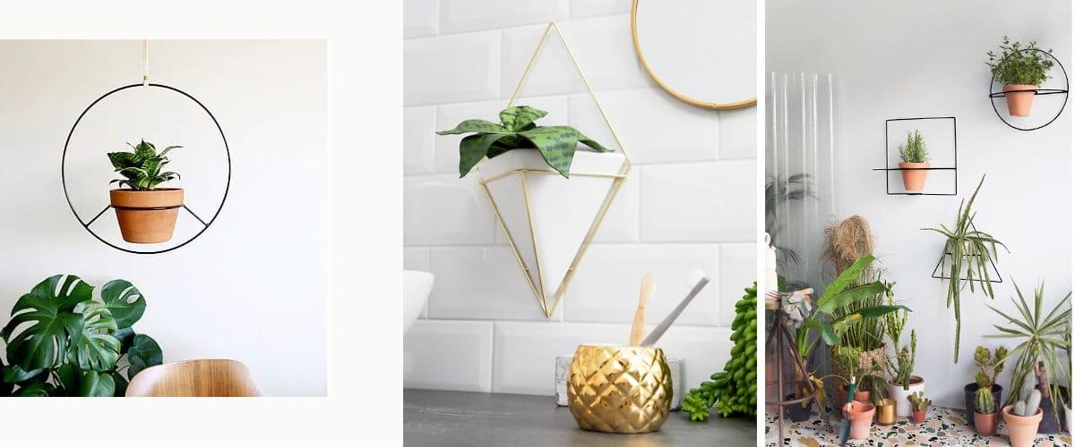 Macetas con estructura geométrica para adosar o colgar de la pared